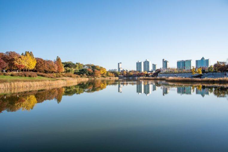 Fall leaves. Fall scenery. Lake. Seoul Olympic Park in South Korea.