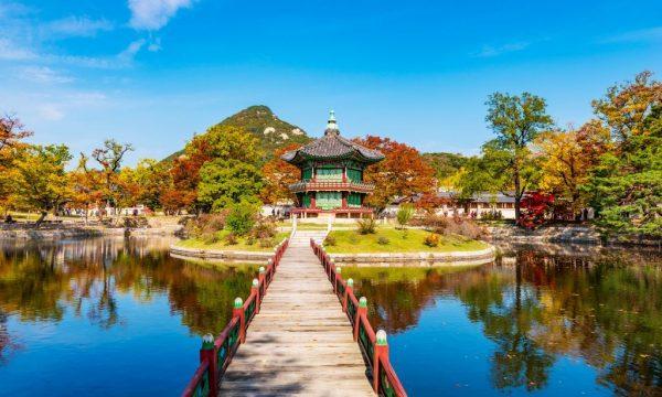 Zájazd sem je predovšetkým výletom do krajiny kontrastov. Medzi vysokými modernými mrakodrapmi v Seoule míňajú chodci s gadgetmi v rukách tiché kláštory a chrámy s mníchmi. Najnovšie technologické novinky v obchodoch strieda výhľad na rozmanitú krajinu. V Južnej Kórei si ale pokrok a tradície nekonkurujú.